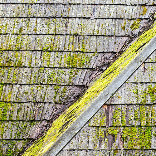 Don't ignore dark spots on your roof! It could be algae growth and buildup.